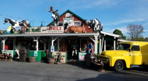 Big Moose Deli And Country Store In New York Is Overflowing With Character And You'll Want To Visit