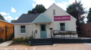 Daily Mews Cat Café‎ Is A Completely Cat-Themed Catopia Of A Cafe In North Carolina