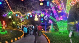 Even The Grinch Would Marvel At The Illuminations At Botanica Gardens In Kansas