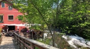 Enjoy Incredible Food In A Bookmill Beyond The Trees At The Alvah Stone In Massachusetts