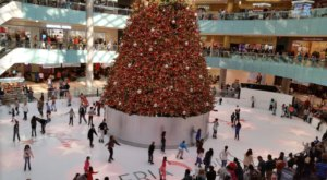 Ice Skate Around The Country's Largest Christmas Tree At The Dallas Galleria In Texas