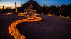 The Garden Christmas Lights Display At Desert Botanical Gardens In Arizona Is Pure Holiday Magic