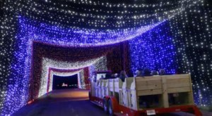 Take A Train Ride Through Christmas Light Tunnels At Dewberry Farm In Texas