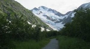 Enjoy An Easy Family Friendly Hike To The Gorgeous Byron Glacier In Alaska