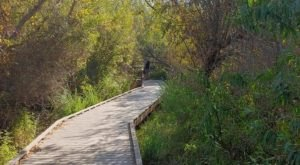 With Its Scenery And Wildlife, The Lake Calavera Loop Trail In Southern California Is A Nature Lover's Paradise