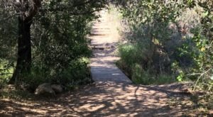 The Enchanting One-Mile Trail In Mission Trails Regional Park In Southern California Is A Short-And-Sweet Fairy Tale Hike