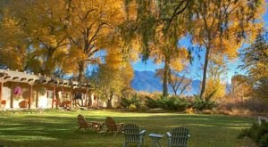 You Will Fall In Love With The Fall Foliage At These 6 Cozy New Mexico Bed & Breakfast Inns