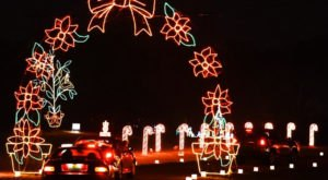 Drive Through Millions Of Lights At Galaxy Of Lights In Alabama This Holiday Season