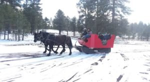 Take A Sleigh Ride To A Campfire With Hot Cocoa In Arizona At Hitchin' Post Stables