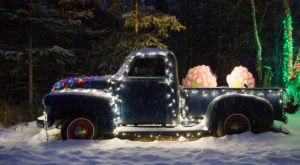 Stroll Through Alaska's Holiday Lights In The Botanical Gardens This Christmas Season