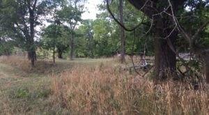 The Arkansas Forest Trail That Holds Long Forgotten Secrets Of The Civil War