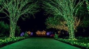 The Garden Christmas Light Display At Cheekwood Estate & Gardens In Nashville Is Pure Holiday Magic