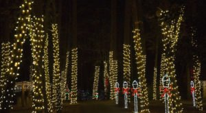 Alabama's Noccalula Falls Park Will Be Transformed Into A Spectacular Winter Wonderland This Christmas Season