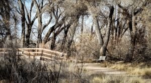 These 6 Easy Trails In New Mexico Are The Perfect Places To Walk Off Your Thanksgiving Wobble