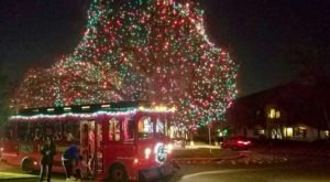 Take A Trolley Ride Through Millions Of Holiday Lights In Dallas, Texas This Season