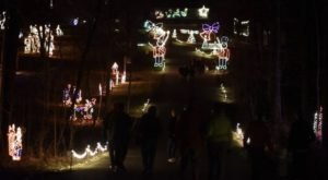 Stroll Through Christmas Lights While You Sip Wine At Walk + Wine In Cincinnati