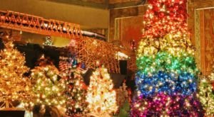 The Enchanting Festival Of Trees & Trains Returns To Kentucky This Year