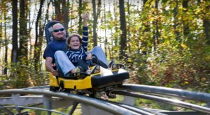 Take A Ride Through Maryland's Fall Foliage On The Wisp Alpine Coaster