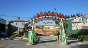 Have A Blast At The Most Unique Themed Car Wash In Southern California At Green Forest Car Wash