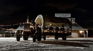 Take A Wagon Ride Through An Idyllic Christmas Tree Farm At Petersen Family Farm In Utah