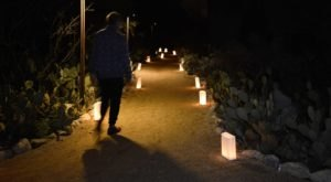 Over 1,000 Glowing Lanterns Will Transform The Rancho Santa Ana Botanic Garden In Southern California For A Magical Event