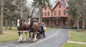 Take A Horse Drawn Sleigh Ride To The Rutherford B. Hayes Presidential Library & Museums In Ohio