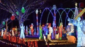 5 Drive-Thru Christmas Lights Displays In Mississippi The Whole Family Can Enjoy