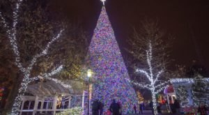 Marvel Over The State's Tallest Christmas Tree At Kennywood Park In Pittsburgh This Christmastime