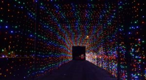 Drive Through Millions Of Lights At This Skylands Stadium Holiday Display In New Jersey