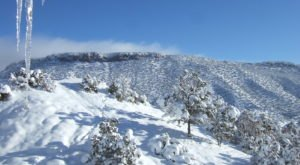 It's Impossible To Forget The Year New Mexico Saw Its Single Largest Snowfall Ever