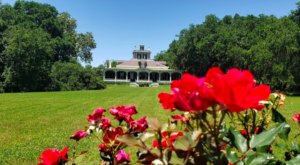 Experience The Spa-Like Serenity Of The Rip Van Winkle Gardens In Louisiana