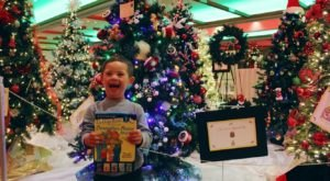 Marvel At 100 Beautiful Christmas Trees Along An Indoor Street At Festival Of Trees In New Mexico