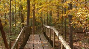 Spend Your Day At A Peaceful Oasis Begging To Be Visited At Walter B. Jacobs Park In Louisiana
