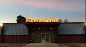Your Whole Family Will Love 6,000-Square-Feet Of Laser Tag At ShadowLand Laser Adventures In Virginia