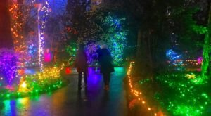 The Christmas Light Display At The Grotto In Oregon Is Pure Holiday Magic