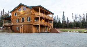 Hunker Down In A Spruce Forest At The Hand-Scribed Log Cabin Alaska Knotty Pine B&B