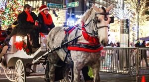 Take A Carriage Ride Through Downtown For A Truly Unique Experience In Detroit