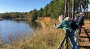 The Silver Bluff Center And Sanctuary Wildlife Park In South Carolina Is Great For A Family Day Trip
