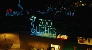 Even The Grinch Would Marvel At The Zoo Lights At Lincoln Children's Zoo In Nebraska