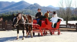 This Complimentary Georgia Sleigh Ride Takes You Through A Winter Wonderland