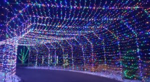 You Won't Want To Miss The Holiday Light Displays At These Three Utah State Parks