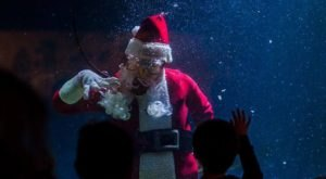 Watch Santa Celebrate The Season With A Holiday Scuba Adventure At The Mississippi Museum Of Natural Science