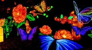 The Chinese Lantern Festival At Racine Zoo Is Changing Wisconsin Into A Glow-In-The-Dark Wonderland