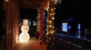Take An Enchanting Walk Along A Glowing Path At Mississippi's Deck The Trails Event