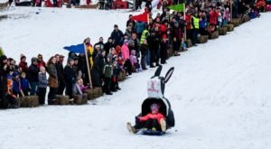 Feel The Wind In Your Hair At The Art Sled Rally, A Whimsical Outdoor Event This Winter In Minnesota