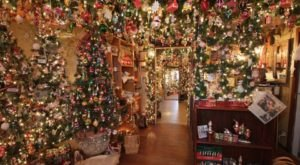 Get In The Spirit At The Biggest Christmas Store In Illinois: Kightlinger Antiques & Collectibles