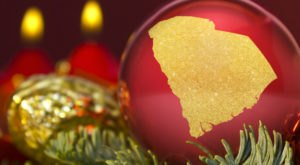 South Carolina Has More Christmas Spirit Than 44 Other States In The US, According To A New Ranking