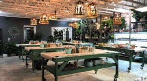 Build And Take Home Your Own Succulent Terrarium At PlantBar In Virginia