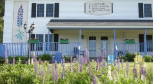 The Lupine Cottage In Maine Has A Nearly Secret Year Round Christmas Store And It's Extra Special This Time Of Year