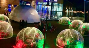 Stay Warm And Cozy This Season At Farm Brew Live, A One-Of-A-Kind Igloo Bar In Virginia